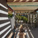 Canopy Taringa Mid May Update 2